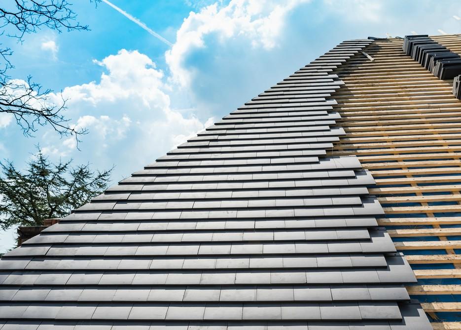 dakbedekking vijanden en problemen dak voorkomen