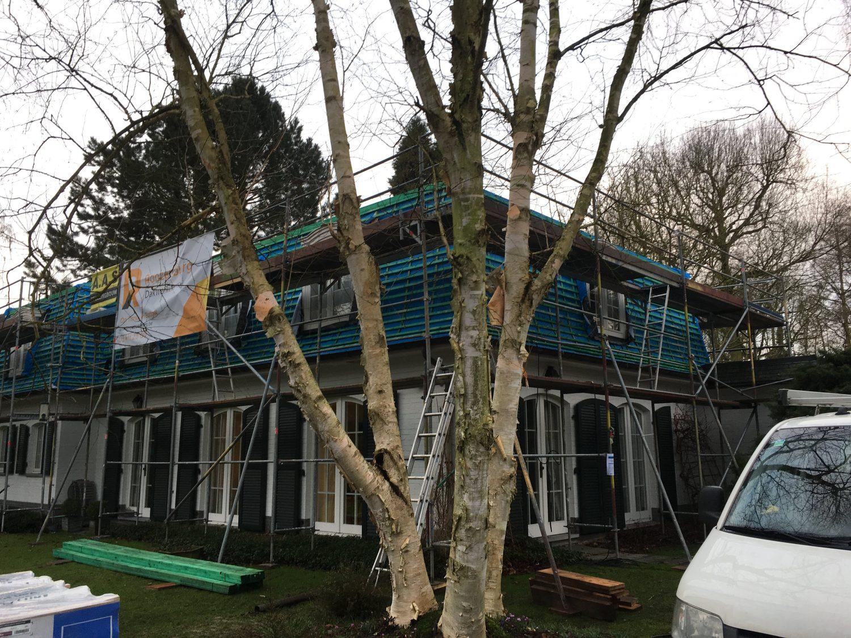 Nieuw leigen dak in brasschaat
